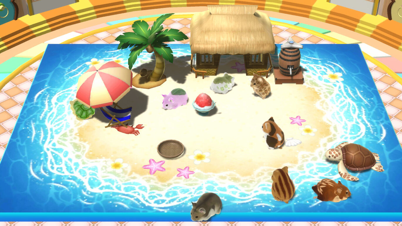 夏の無人島パック