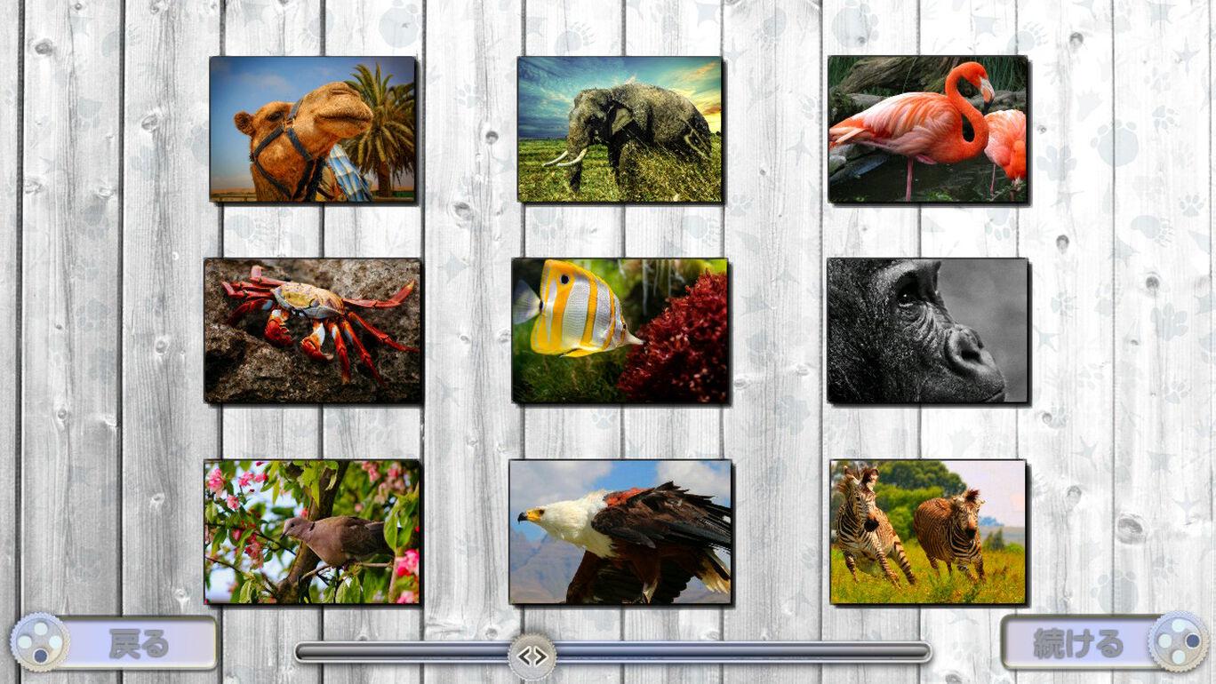 ジグソー・ファン: 驚くべき動物たち