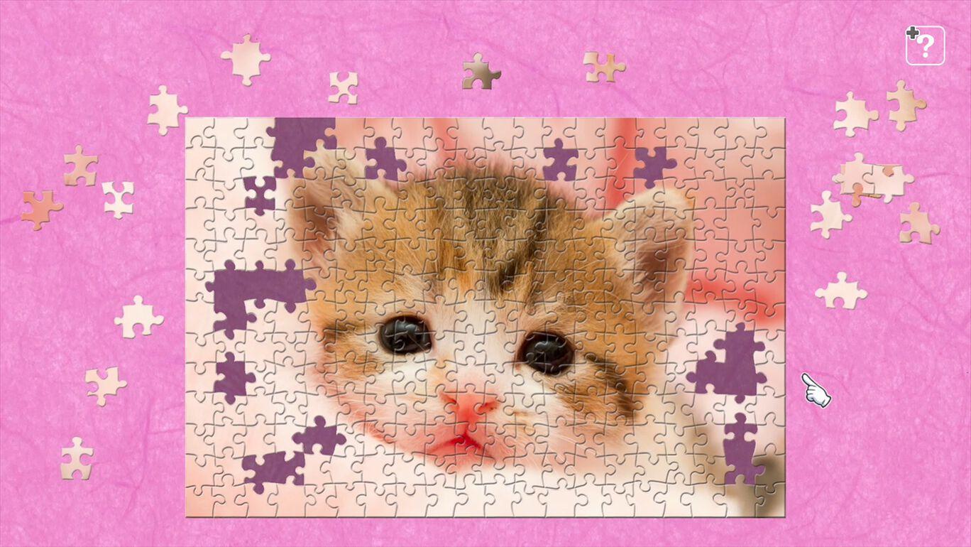子猫 / 五十嵐健太