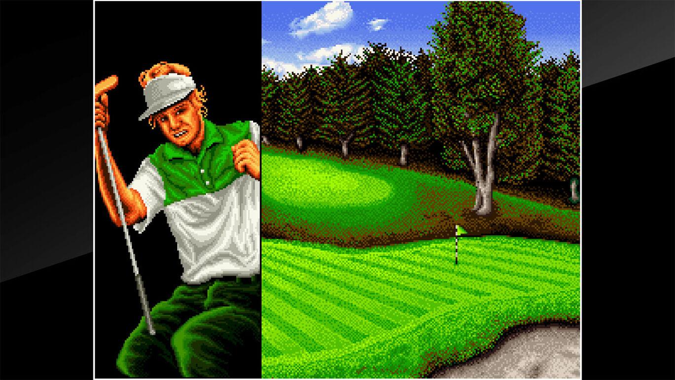 アケアカNEOGEO トッププレイヤーズゴルフ