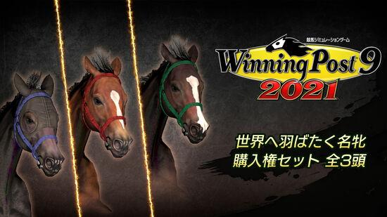 WP9 2021 世界へ羽ばたく名牝 購入権セット 全3頭