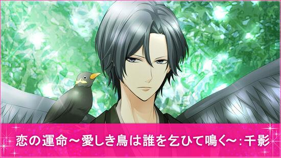 恋の運命~愛しき鳥は誰を乞ひて鳴く~:千影