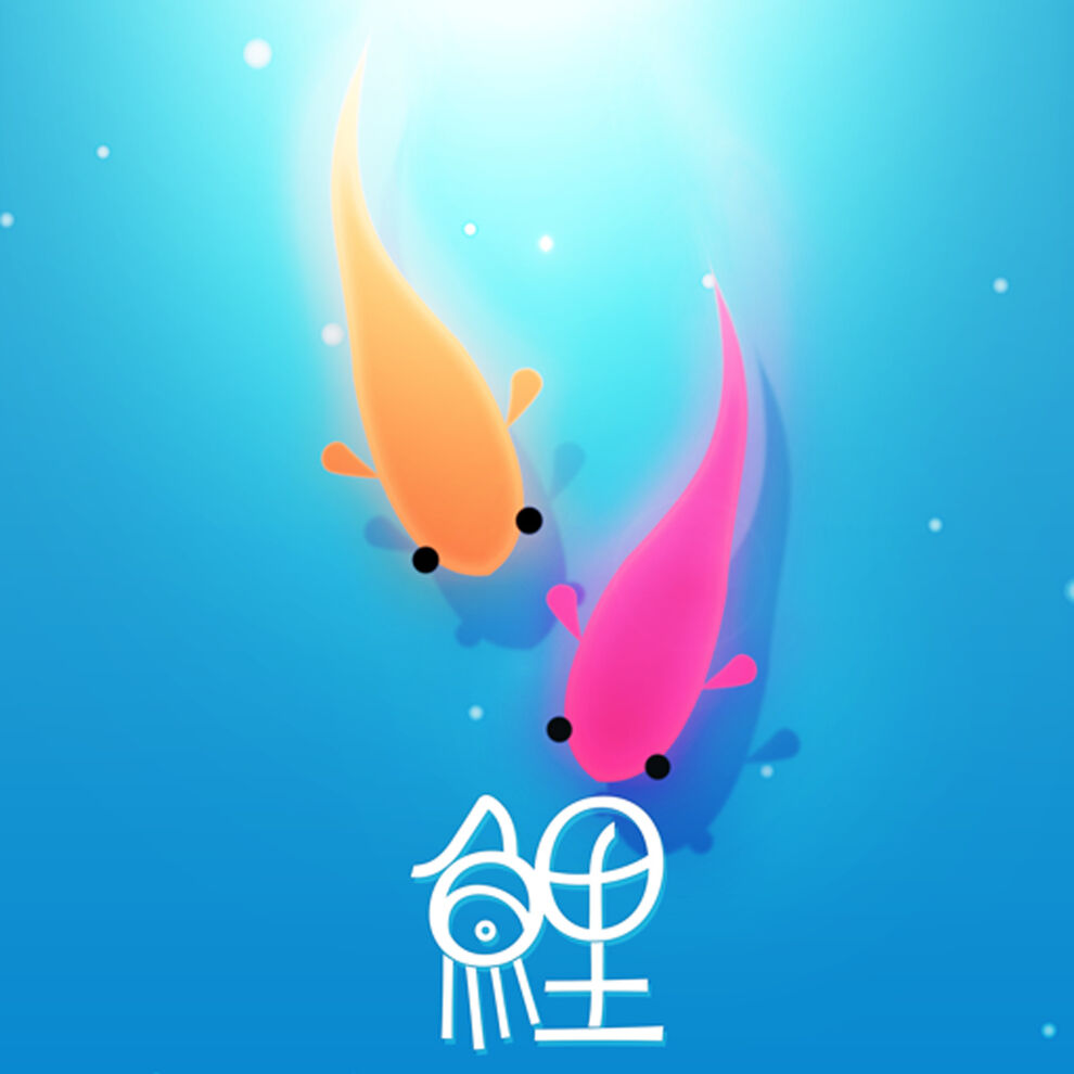 鯉(KOI)