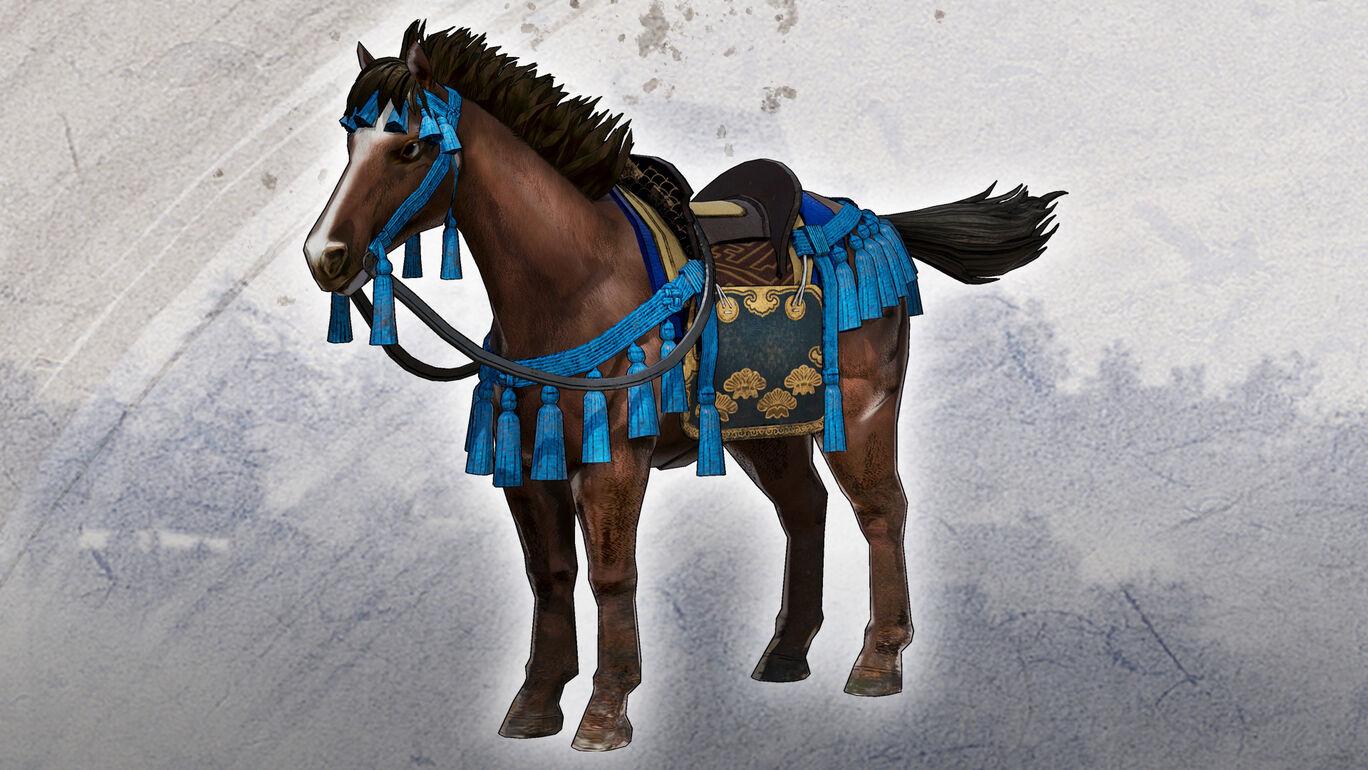 大河ドラマ『麒麟がくる』特別軍馬「明智光秀の馬」