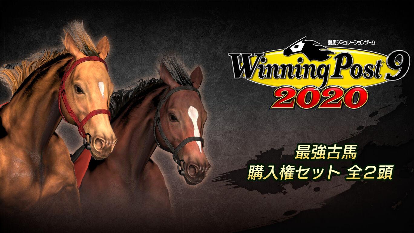 WP9 2020 最強古馬 購入権セット 全2頭