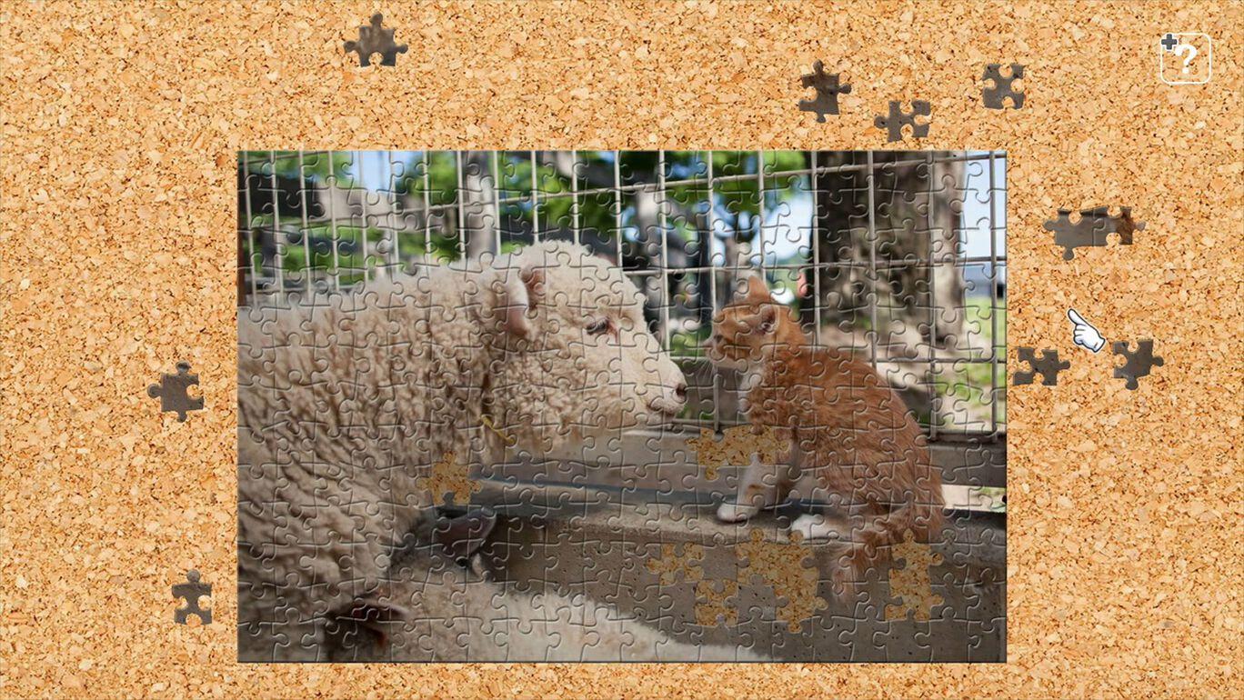 スエトシ牧場の猫とともだち / 五十嵐健太