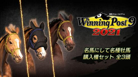 WP9 2021 名馬にして名種牡馬 購入権セット 全3頭