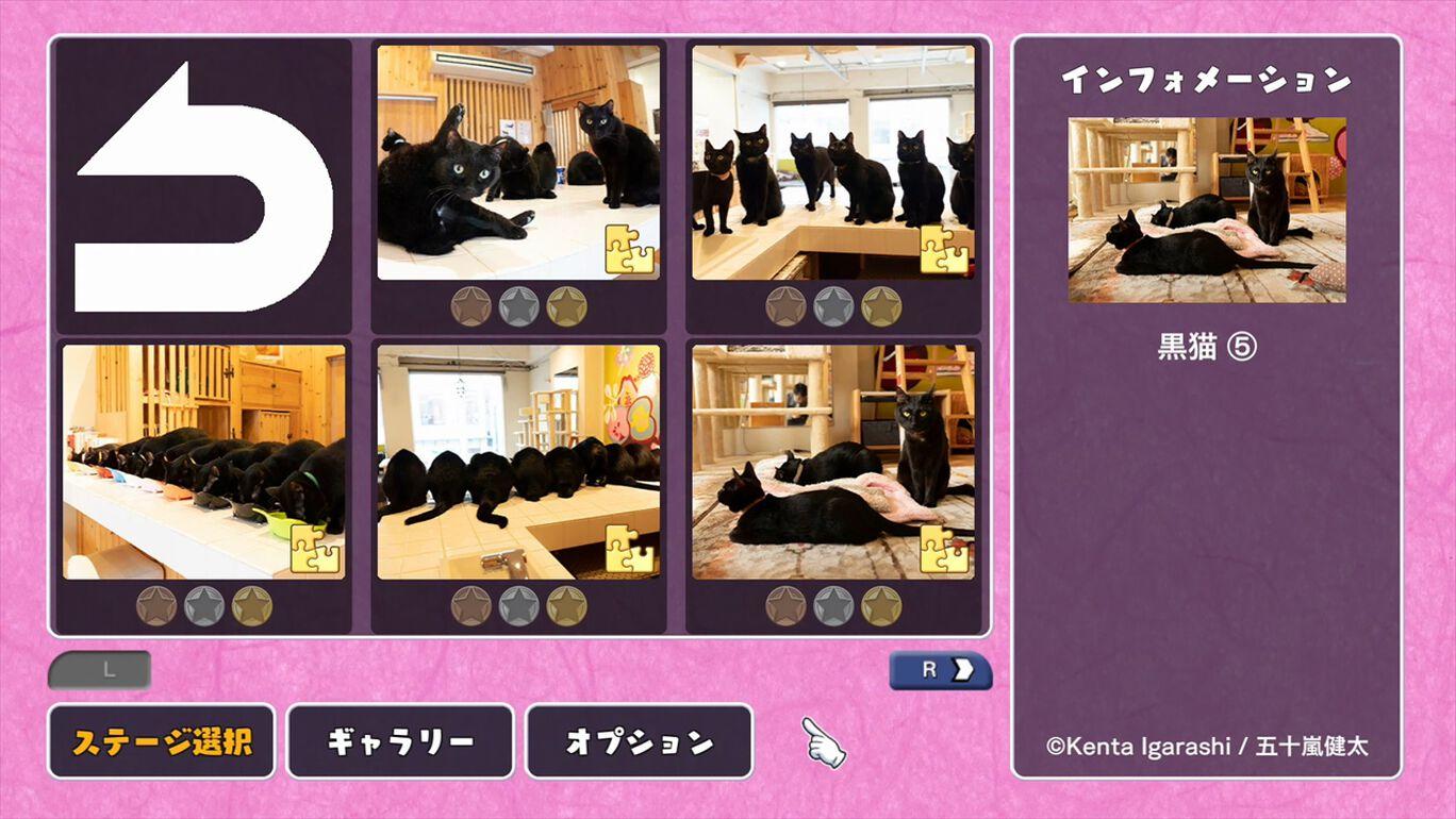 黒猫 保護猫カフェ ねこびやか編 / 五十嵐健太