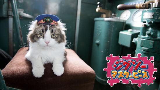 芦ノ牧温泉駅のねこ駅長 / 五十嵐健太