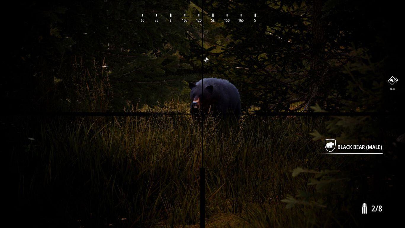 Hunting Simulator 2 - Bear Hunter Edition