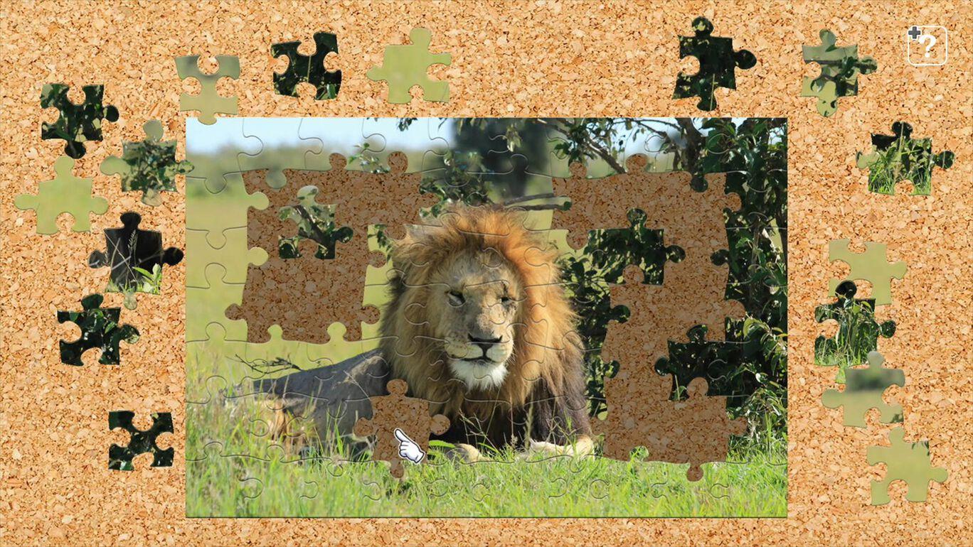 アフリカの野生動物